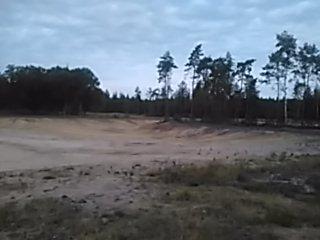 Sandy Clearing (Gelderland, Netherlands)