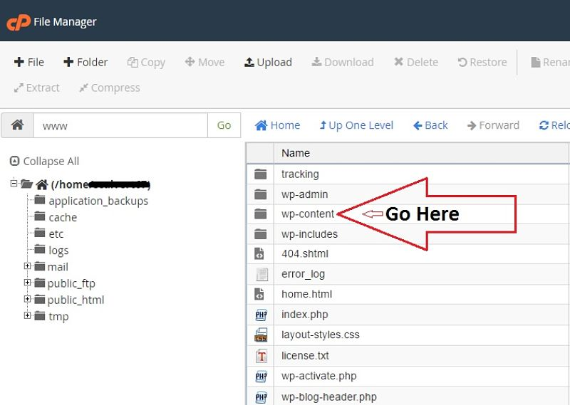 How to Find Your WordPress Content Folder