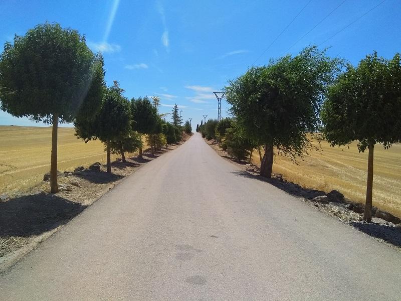 Country Road near Mondéjar, Spain
