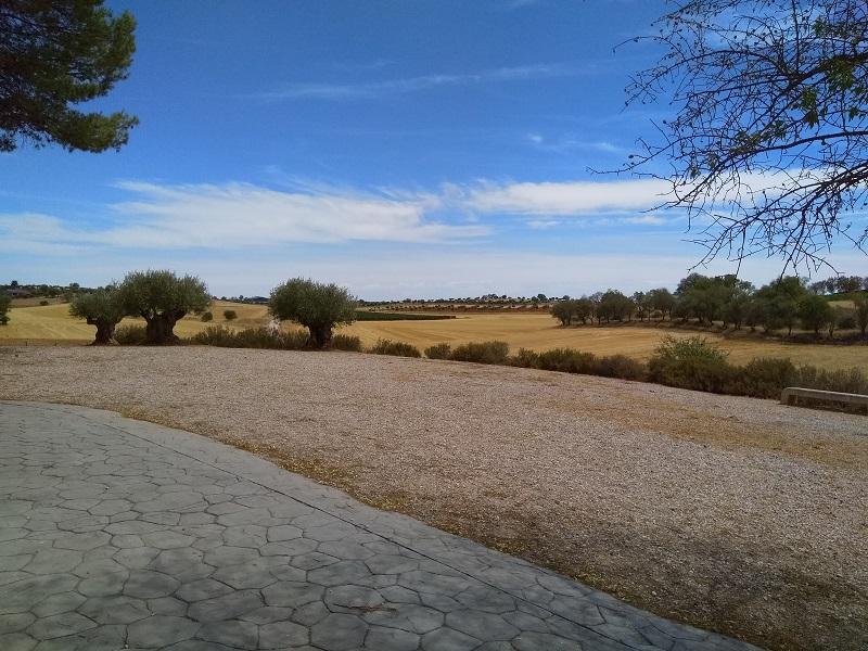 View over Open Fields (Mondéjar, Spain)