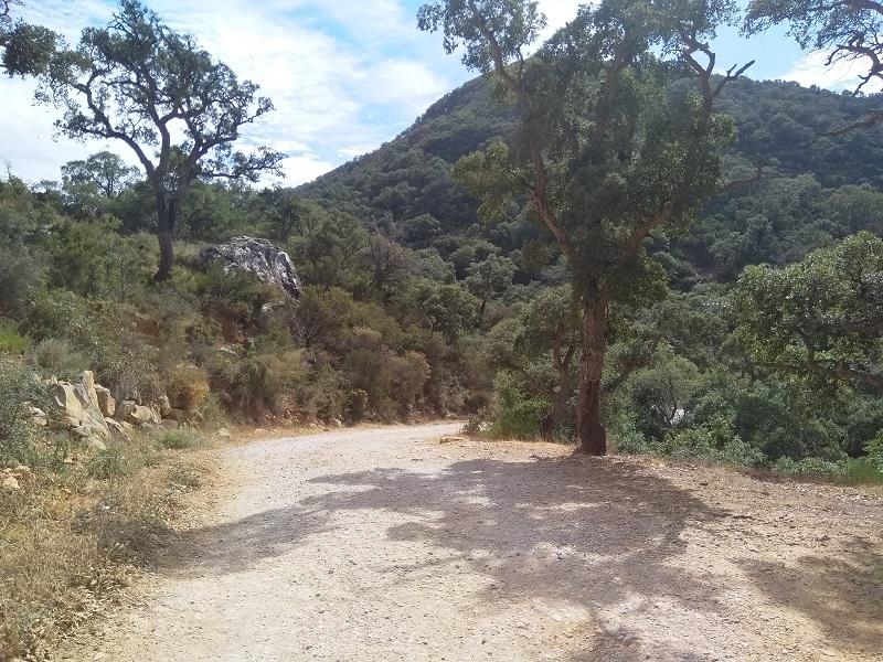 Hiking Route (Algeciras, Spain)